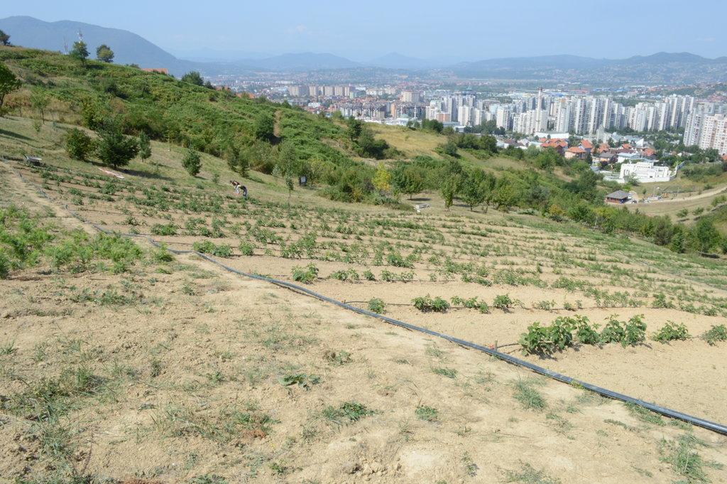 Poljoprivredno-edukacioni poligon