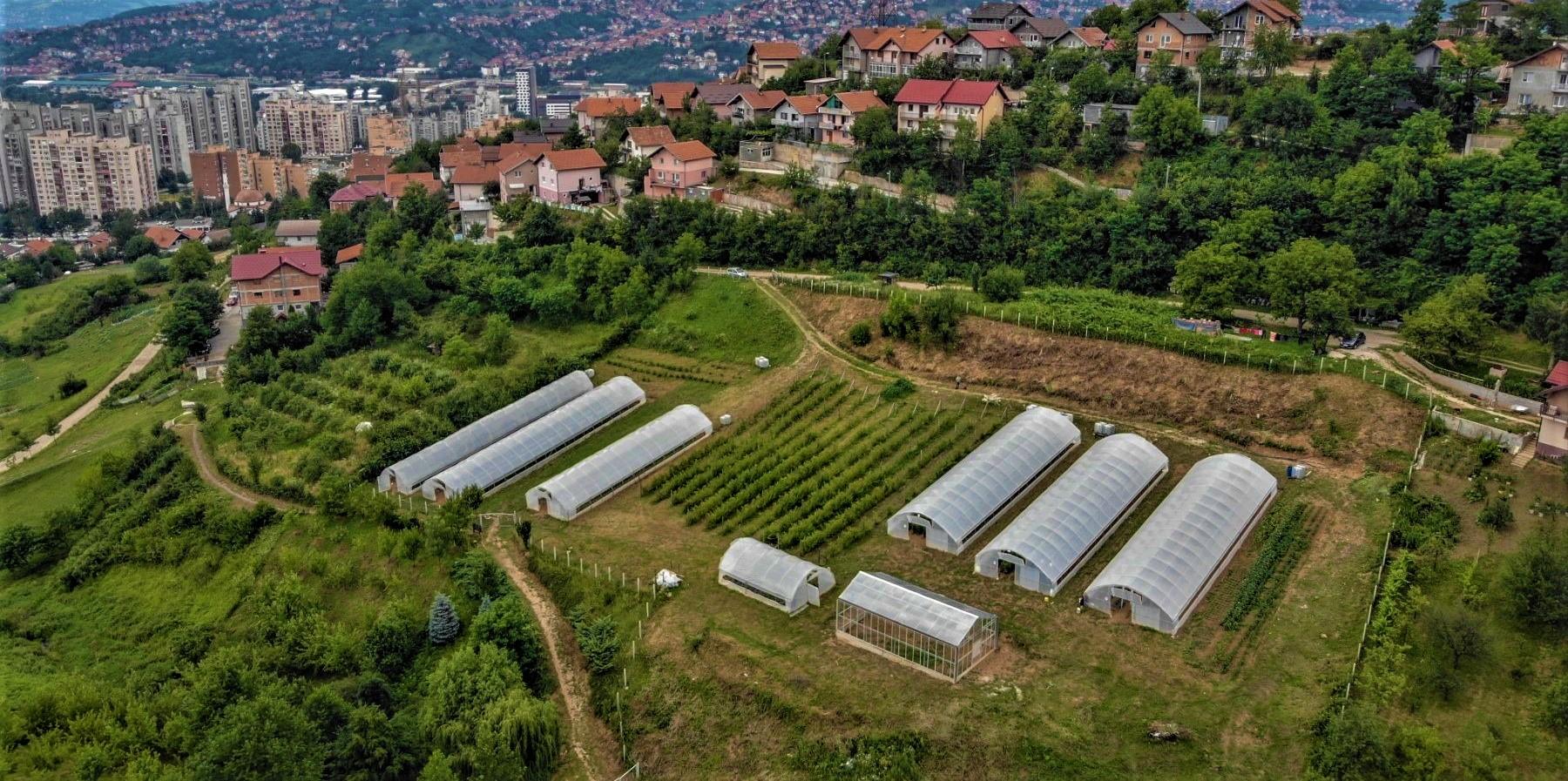 Prošireni proizvodni kapaciteti: Očekujemo 13 tona prinosa zdravih ekoloških poljoprivrednih proizvoda